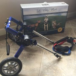Walking Wheels Medium Small with box