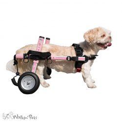small-walkin-wheels-1