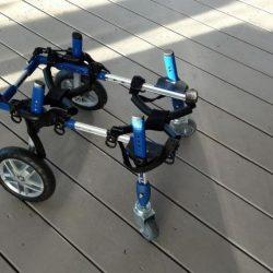 Dutchie wheelchair 2