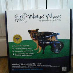 Walkin Wheels 4-05-2019 001